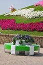 Dubai miracle garden in the uae it contains over million flowers Royalty Free Stock Photography
