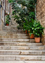 Dubrovnik alley narrow street with greenery in flower pots on the floor and the walls in croatia Royalty Free Stock Photos