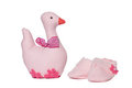 Duck and Baby Shoes Royalty Free Stock Images
