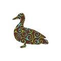 Duck bird color silhouette animal