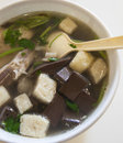 Duck blood and bean starchy vermicelli soup jiangsu province nanjing flavor food china Stock Photography