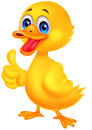 Duck cartoon thumb up illustration of Stock Photo