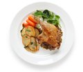 Duck confit de canard french bistro dish Stock Images