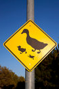 Duck crossing traffic sign Royalty Free Stock Photo