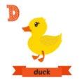 Duck. D Letter. Cute Children ...