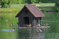 Duck house floating on the lake in the park Royalty Free Stock Photo