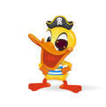 Duck - Pirat illustration Stock Photo