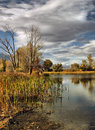 Duck pond at bishop a during autumn just outside california Royalty Free Stock Photography