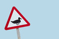 Duck road warning sign with copy space red triangle for ducks shillouette Royalty Free Stock Images
