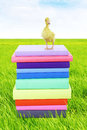Duck standing on stack of books Royalty Free Stock Image