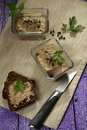 Duck terrine with rye bread Stock Photography