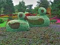 Ducks made of flowers in jesperhus botanic garden in jutland denmark Stock Photos