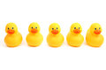 Ducks in a row yellow bath time Royalty Free Stock Photography