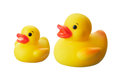 Ducks two yellow rubber isolated on white background Stock Photography