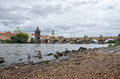 Ducks on the Vltava River in the background Charles Bridge Royalty Free Stock Photo