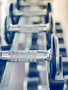 Dumbbell in at the gym room Royalty Free Stock Photo