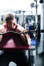 Dumbbell training in gym Stock Image