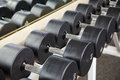 Dumbbell weights Royalty Free Stock Photo