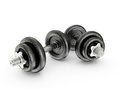 Dumbbells black on a white background Royalty Free Stock Image