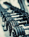 Dumbbells rows of in the gym Stock Image