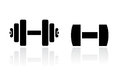 Dumbbells vector icon Royalty Free Stock Photo