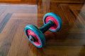 Dumbells on wooden floor Royalty Free Stock Photo