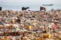 Dump on the beach Royalty Free Stock Photo