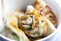 Dumplings in Chinese style Stock Image