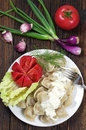 Dumplings in plate Royalty Free Stock Photo