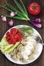 Dumplings in plate Royalty Free Stock Photo