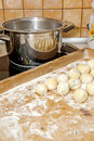 Dumplings ready to boil Royalty Free Stock Photography