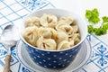 Dumplings russian pelmeni