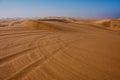 Dune Buggy Tracks in Sand Dunes of the Kalahari Desert Royalty Free Stock Photo