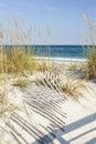 Dune Fences at Gulf Islands National Seashore Royalty Free Stock Photo
