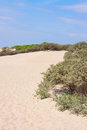 Dune landscape with sand Royalty Free Stock Image