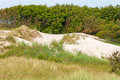 Dune near baltic sea behind the forest in the background Stock Photography