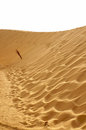 Dune of Sahara desert Royalty Free Stock Photo