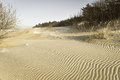 Dunes baltic seacoast landscape of drifted at the palanga lithuania wintertime Royalty Free Stock Photos
