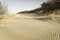Dunes Baltic seacoast Royalty Free Stock Photo