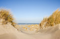 Dunes, beach grass, beach and sea Royalty Free Stock Photography