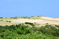 Dunes the of cape cape massachusetts with a blue sky background Royalty Free Stock Photo
