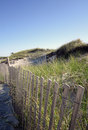 Dunes, Seagrass and Fence at Chapin Beach in Dennis, MA (Cape Cod) Royalty Free Stock Photo
