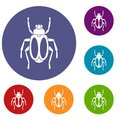 Dung beetle icons set