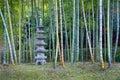Dunge för japansk lykta och bambu Royaltyfri Foto