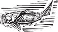Dunkleosteus Fossil Fish Royalty Free Stock Photo