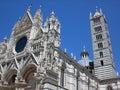 Duomo сиены Стоковое Изображение