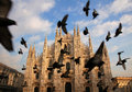 Duomo di milano milan cathedral in summer italy Royalty Free Stock Photos