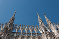 Duomo milano bleu cathedral side italy saint sculptures sky sunny Royalty Free Stock Image