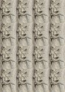 DUPLICATION OF WEIRD FACE PATTERN IN BARK OF BAOBAB TREE Royalty Free Stock Photo