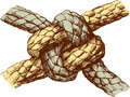 Durable knot Royalty Free Stock Photo